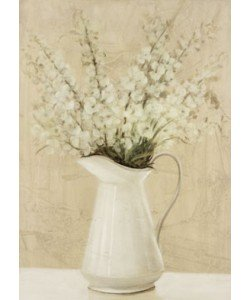 Col David, Jarras flores silvestres 1