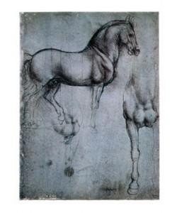 Leonardo da Vinci, Studio di cavalli