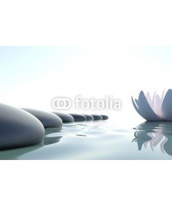 dampoint, Zen flower loto near stone