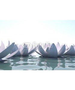 dampoint, Zen loto flowers in water
