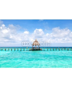determined, Tropical seascape