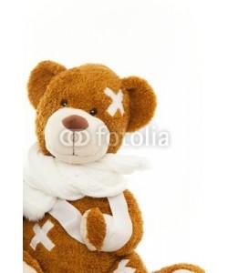 drubig-photo, s o s bear