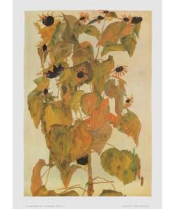 Egon Schiele, Sonnenblumen - 1911