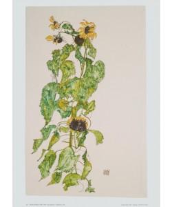 Egon Schiele, Sonnenblumen - 1917