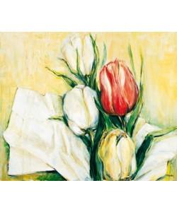 Elisabeth Krobs, Tulipa Antica