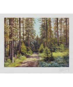 Ernst Frommhold, Sonniger Waldweg