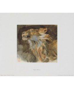 Eugene Delacroix, Löwenkopf