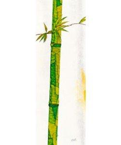Michael Ferner, Bambus Duo II
