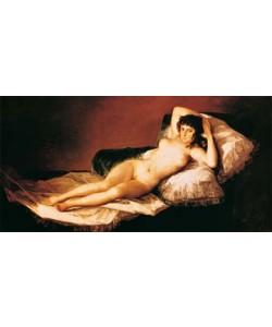 Francisco de Goya, Die nackte Maja