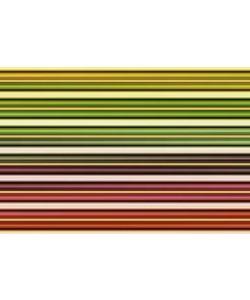 Gerhard Rossmeissl, Color Lines I