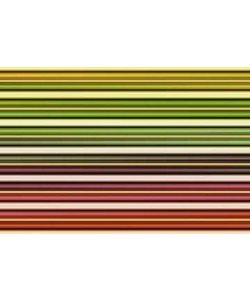 Gerhard Rossmeissl, Color Lines I