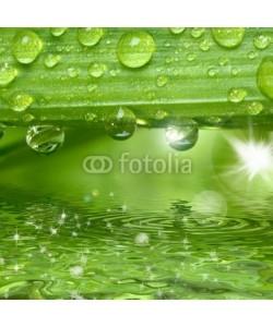 Gerhard Seybert, Wassertropfen auf grüner Pflanze mit Sonne und Glitzern