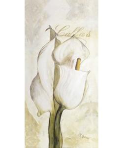 Gerstner Heidi, Standing Rose