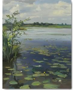 Gosse Koopmans, Water Lilies Earnewâld II