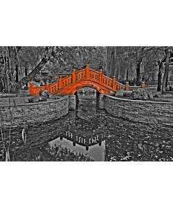 Hady Khandani, COLORSPOT - BRIDGE IN ZHONGSHAN PARK - SHENYANG - CHINA