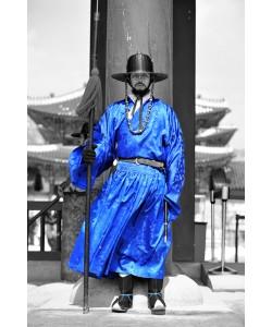 Hady Khandani, COLORSPOT - PALACE GUARD SEOUL - SOUTH KOREA 2