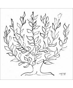 Henri Matisse, Le Platane