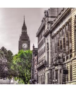 Frank Assaf, London Tree
