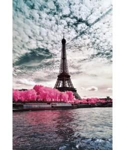 Tonee Gee, IR'on Lady, Paris