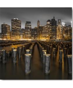 Assaf Frank, New York III