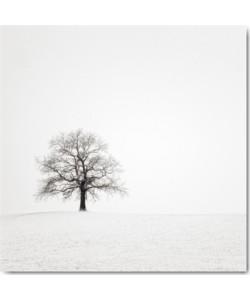 Uwe Steger, Wintersturm II