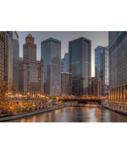 Aurélien Terrible, Peaceful Chicago