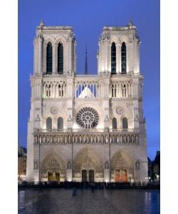 Rolf Fischer, Notre Dame