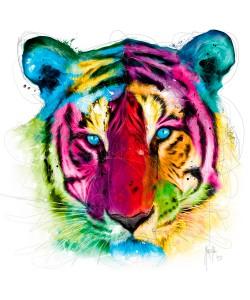 Patrice Murciano, Tiger Pop