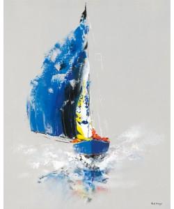 Gérard de Courcy, Le Bateau Bleu