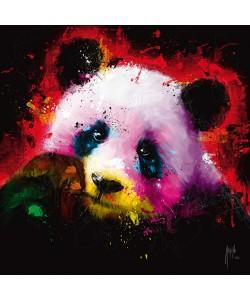 Patrice Murciano, Panda Pop