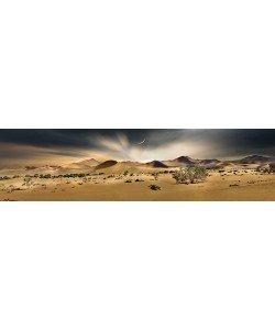 Peter Hillert, Namib Sandsea II
