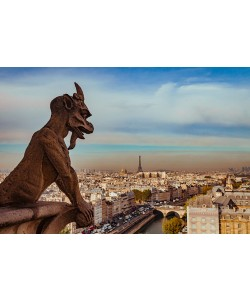 Arnaud Bertrande, Vue sur Paris depuis Notre Dame