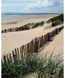 Gill Copeland, Drifting Sands