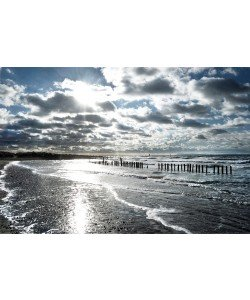 Gill Copeland, Glistening Shoreline