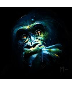 Patrice Murciano, Black Kong