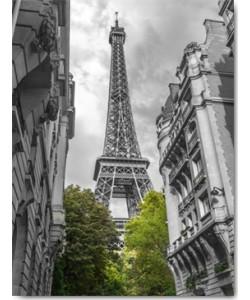 Frank Assaf, Paris my Love