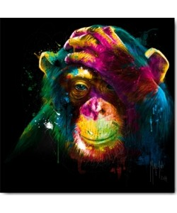 Patrice Murciano, The Darwin's Preoccupations