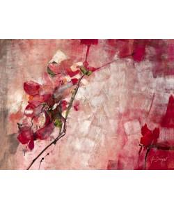 Ingeborg Dreyer, Symphony in Red
