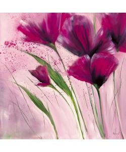 Isabelle Zacher-Finet, Le jour en rose II