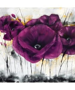 Isabelle Zacher-Finet, Pavot violet III