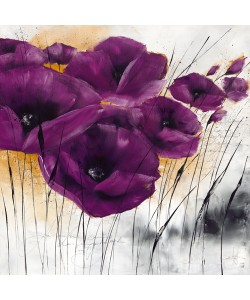 Isabelle Zacher-Finet, Pavot violet IV