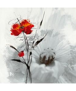 Isabelle Zacher-Finet, Petite aventure fleurie I