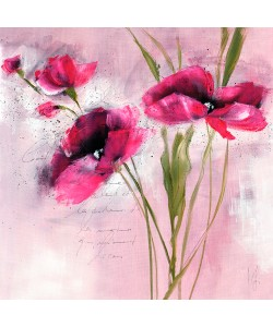 Isabelle Zacher-Finet, Pink Flower I