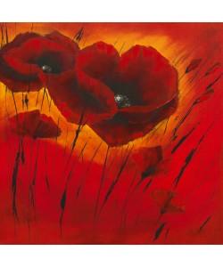 Isabelle Zacher-Finet, Quand lamour fleurit I