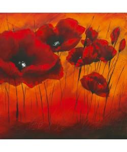 Isabelle Zacher-Finet, Quand lamour fleurit II