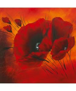 Isabelle Zacher-Finet, Quand lamour fleurit III