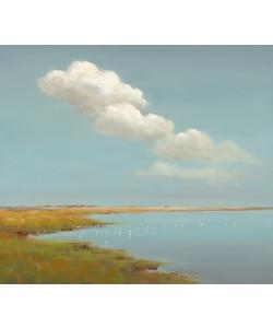 Jan Groenhart, Birds and Clouds