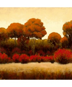 James Wiens, Autumn Forest II