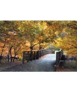 Jessica Jenny, Autumn Overpass