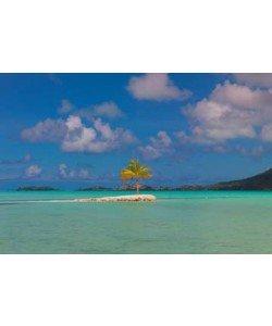 John Xiong, Bora Bora Lone Palm
